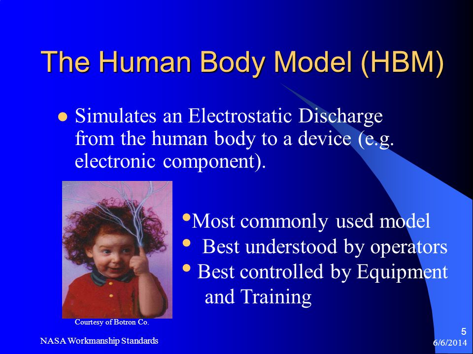 The Human Body Model (HBM)