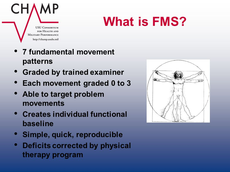 What is FMS 7 fundamental movement patterns