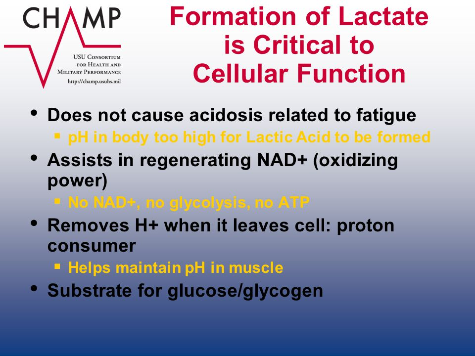 Formation of Lactate is Critical to Cellular Function