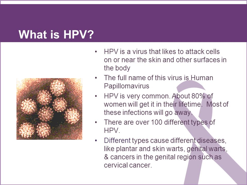 What is HPV HPV is a virus that likes to attack cells on or near the skin and other surfaces in the body.