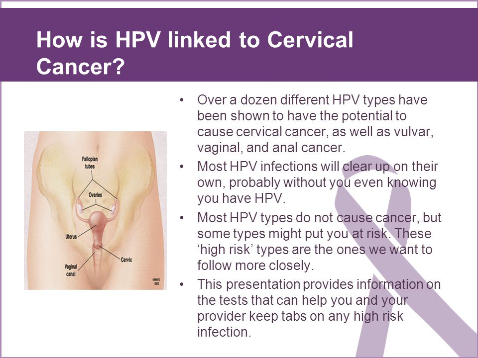 How is HPV linked to Cervical Cancer