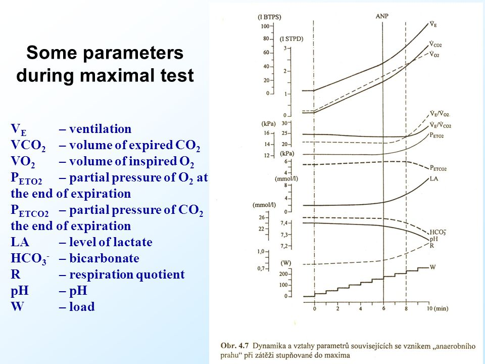 Some parameters during maximal test