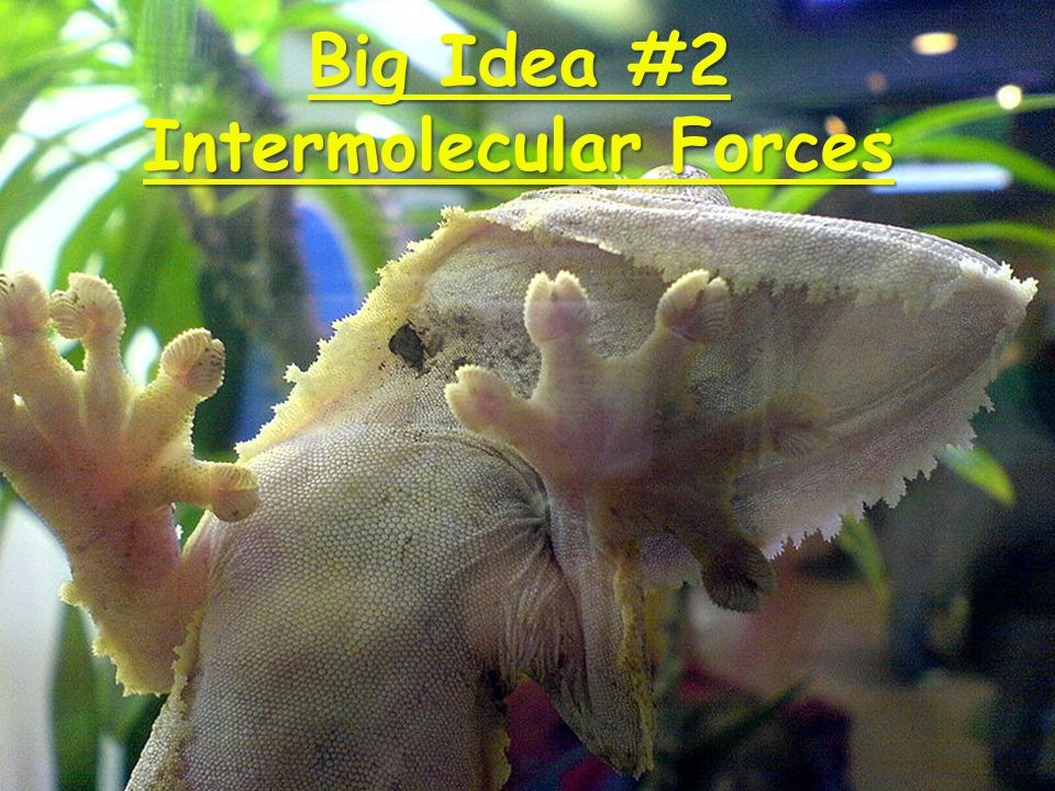 Big Idea #2 Intermolecular Forces