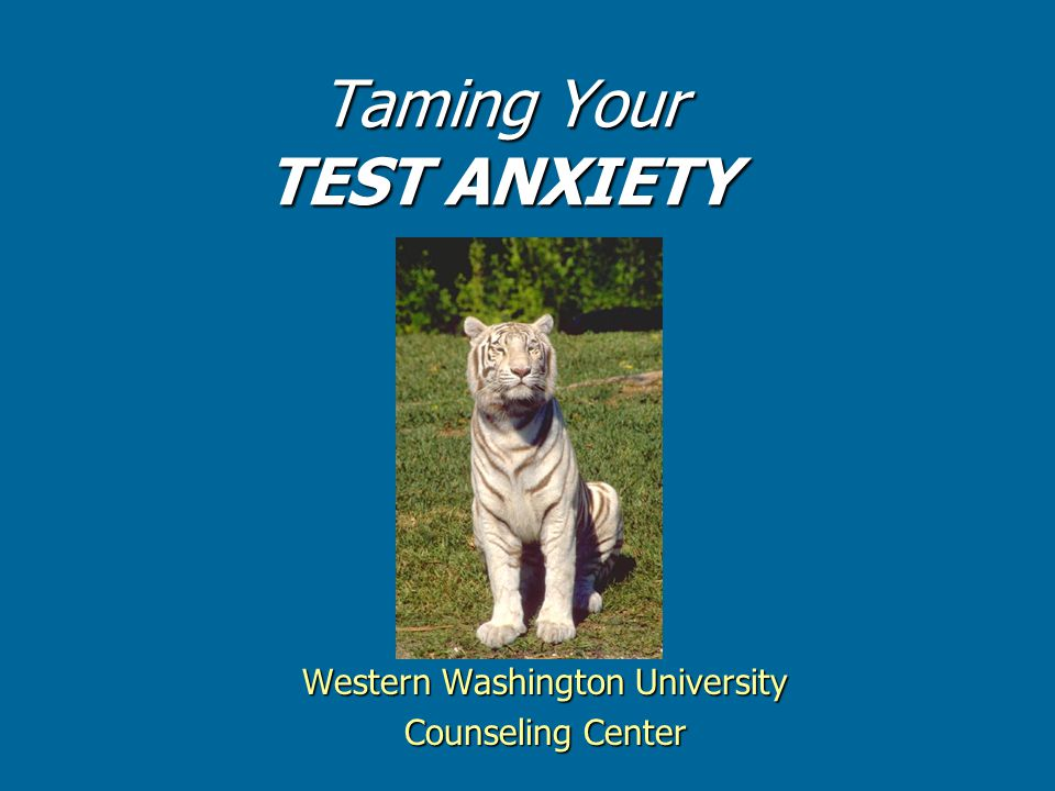 Taming Your TEST ANXIETY