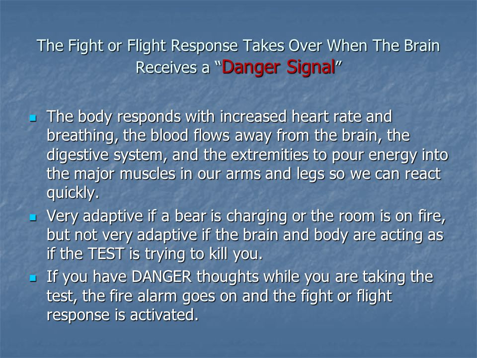 The Fight or Flight Response Takes Over When The Brain Receives a Danger Signal