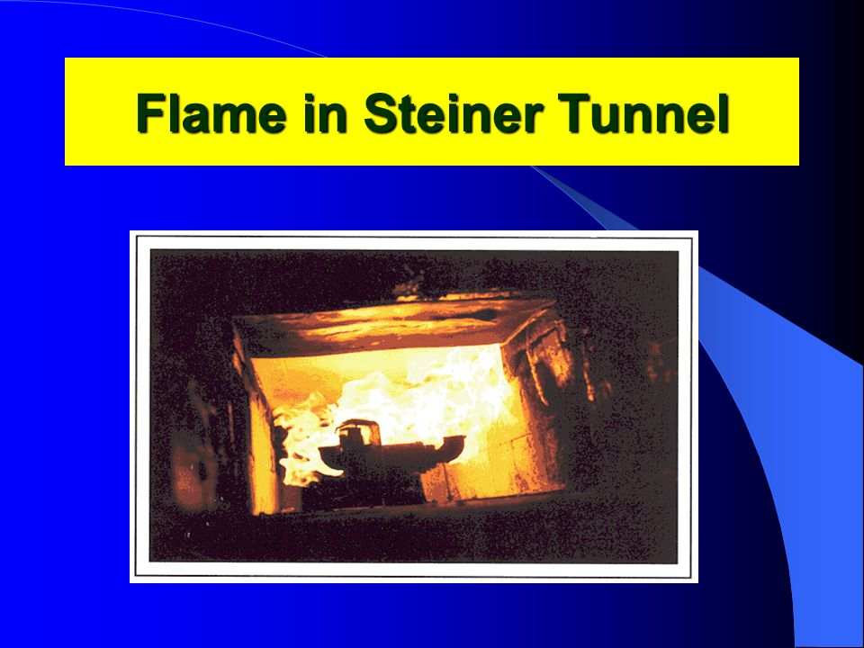 Flame in Steiner Tunnel