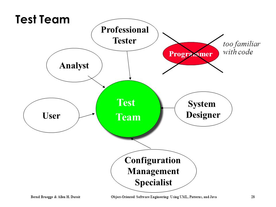 Test Team Test Team Professional Tester Analyst System Designer User