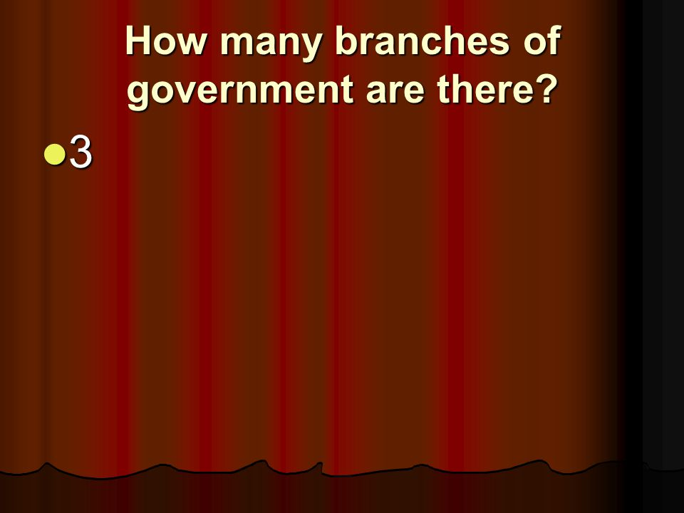 How many branches of government are there