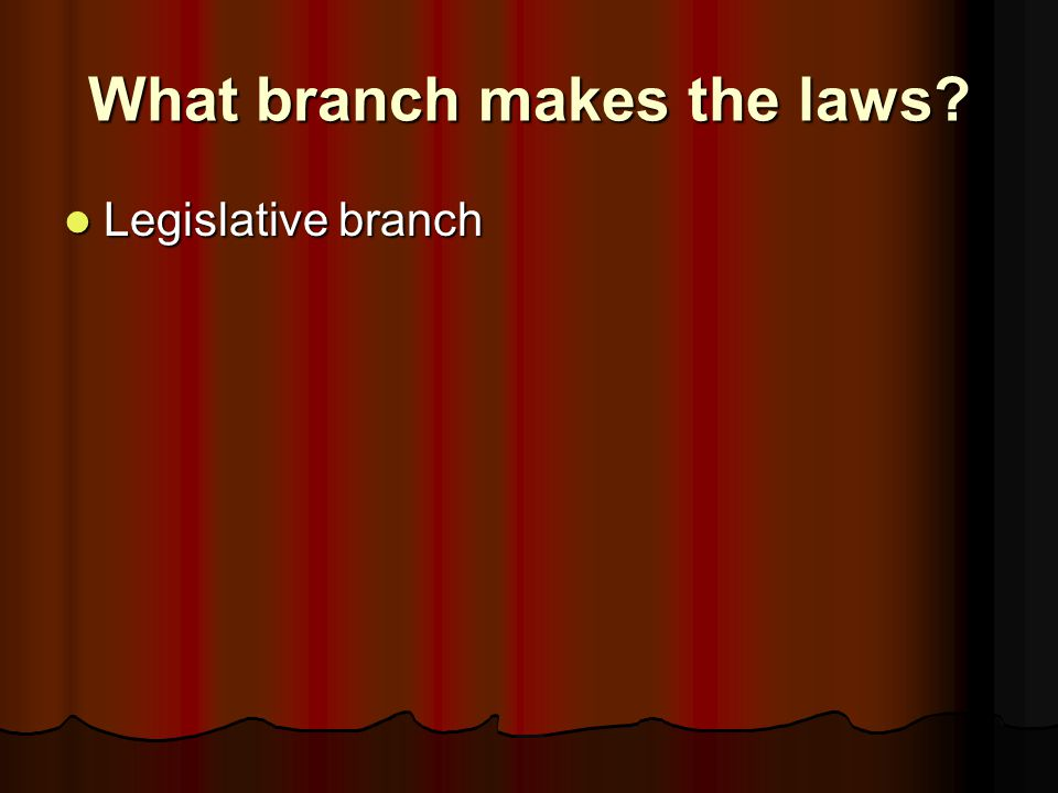 What branch makes the laws