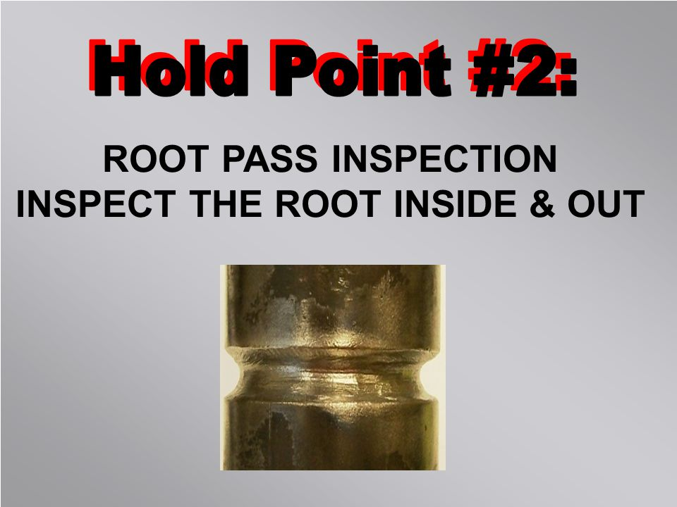 INSPECT THE ROOT INSIDE & OUT