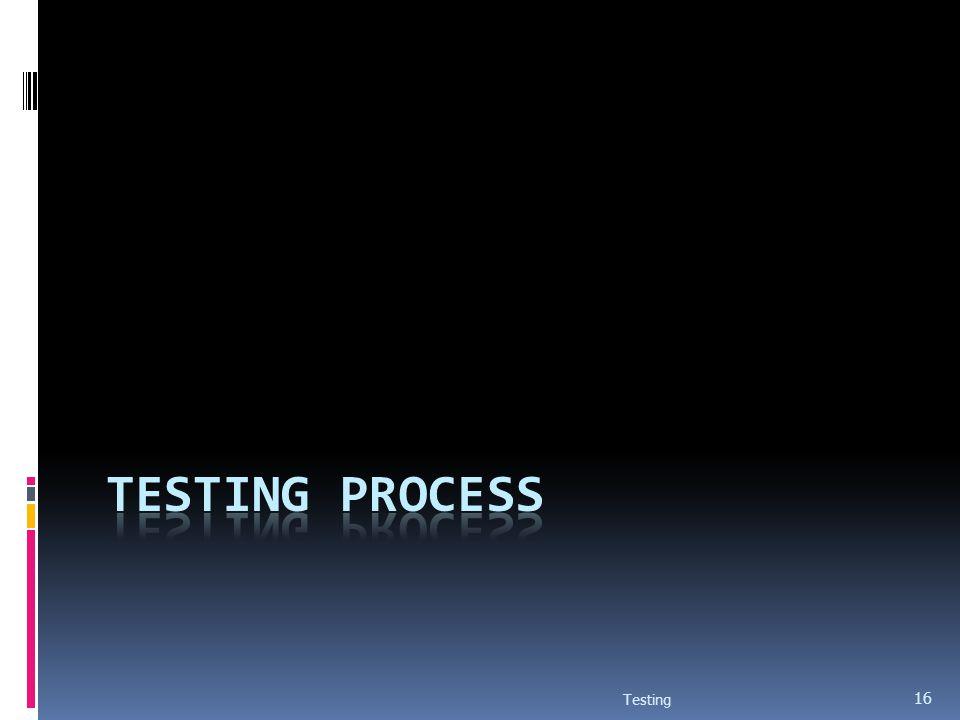 Testing Process Testing