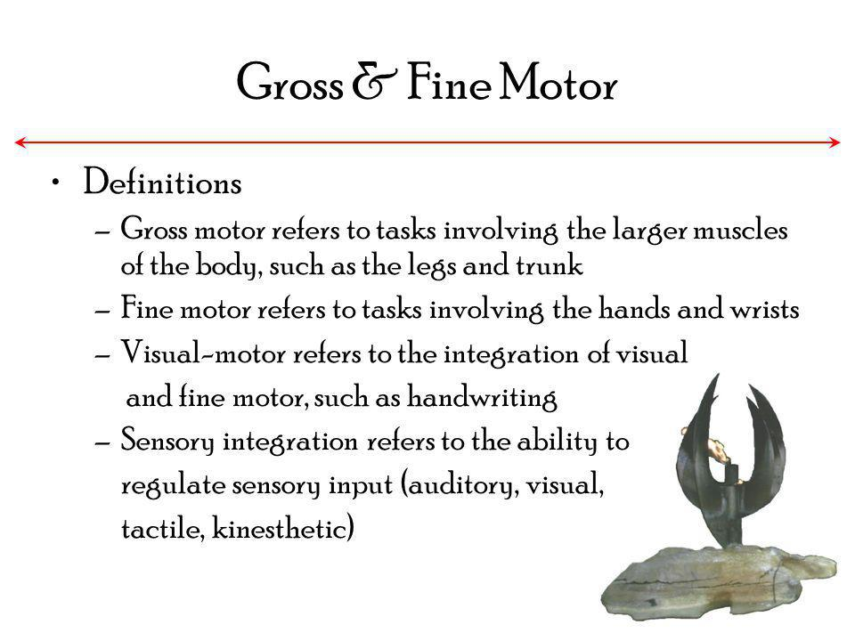 Gross & Fine Motor Definitions
