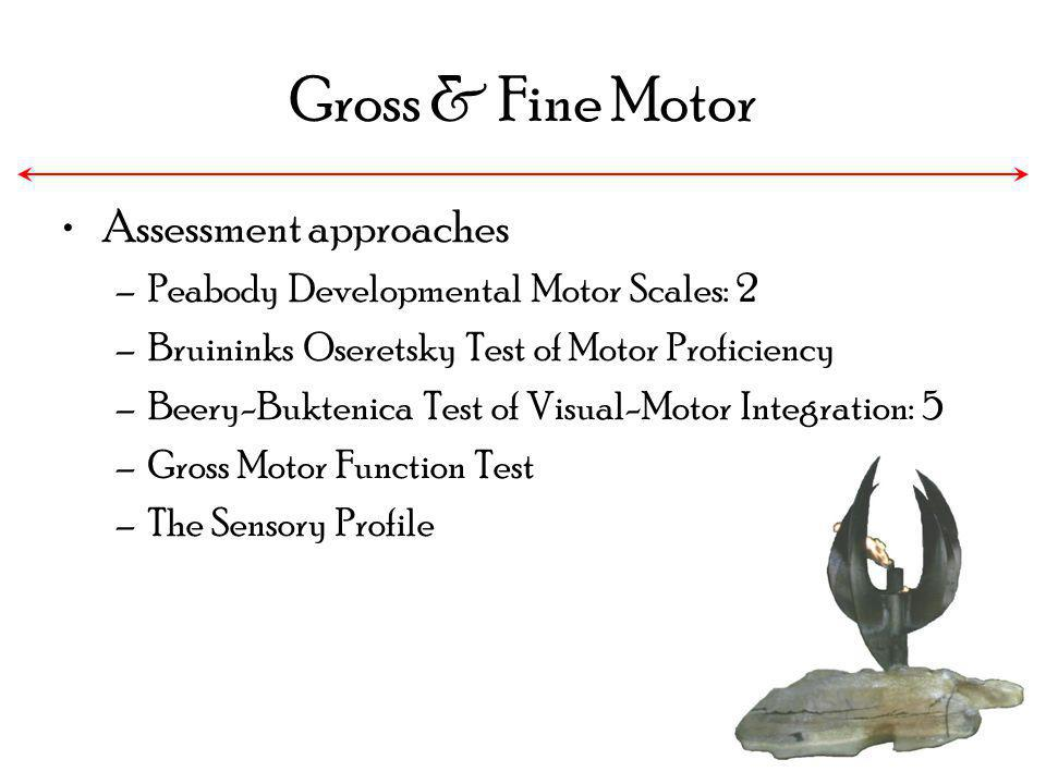 Gross & Fine Motor Assessment approaches