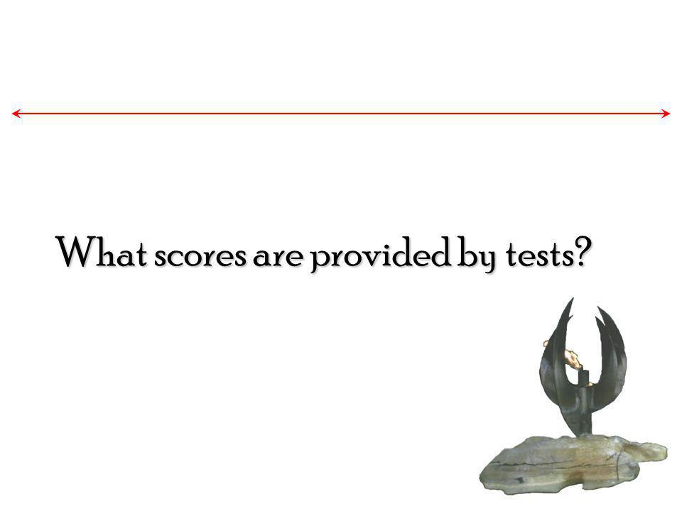 What scores are provided by tests