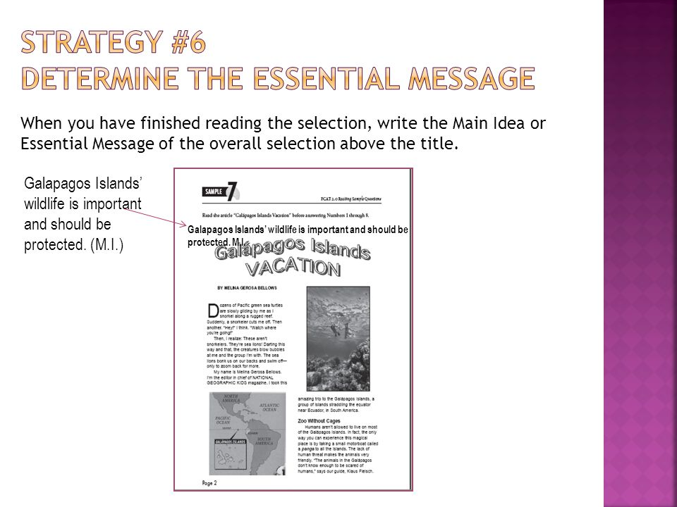 Strategy #6 Determine the Essential MESSAGE