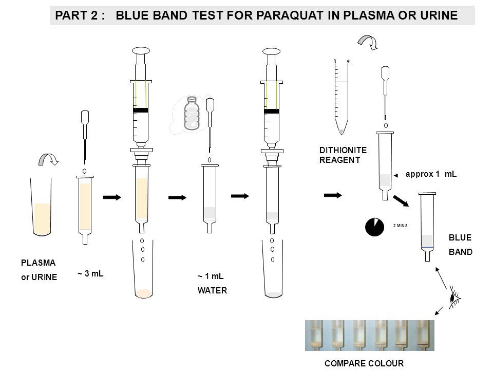 PART 2 : BLUE BAND TEST FOR PARAQUAT IN PLASMA OR URINE