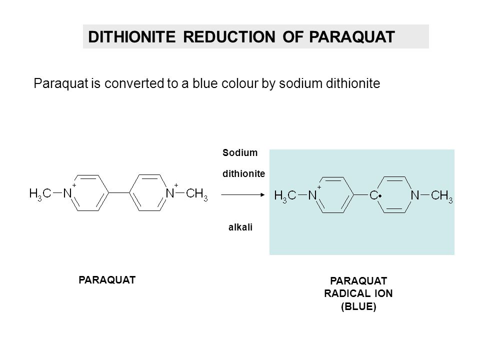 PARAQUAT RADICAL ION (BLUE)