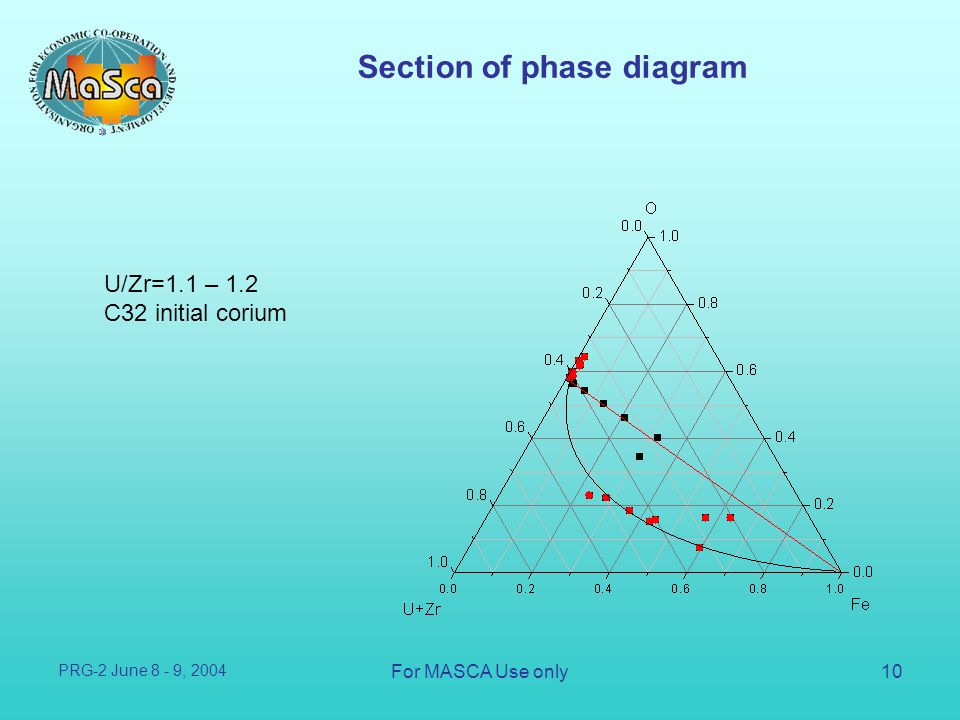 Section of phase diagram