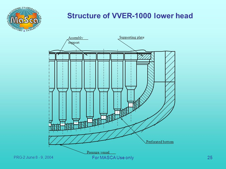 Structure of VVER-1000 lower head