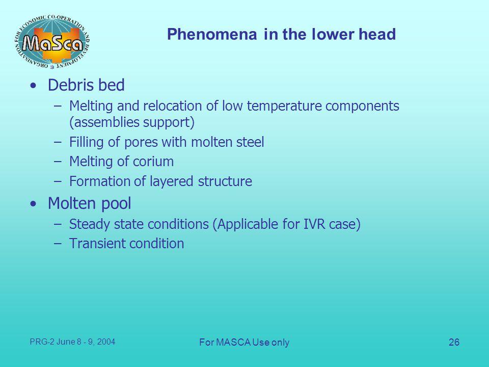 Phenomena in the lower head