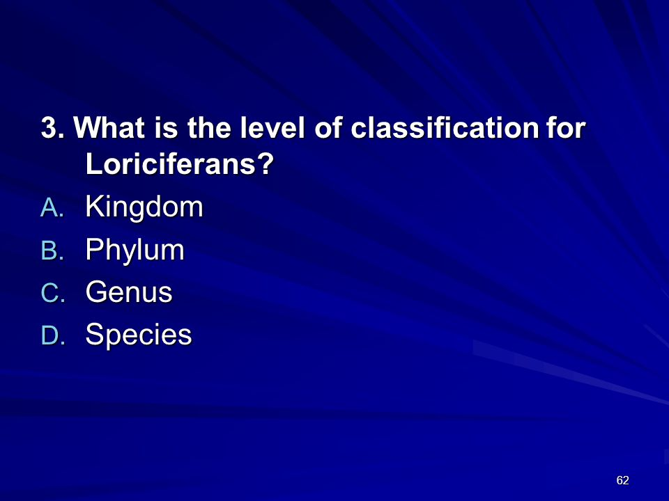 3. What is the level of classification for Loriciferans