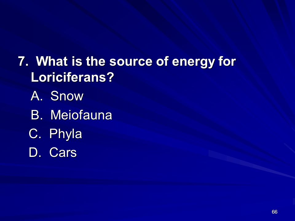7. What is the source of energy for Loriciferans