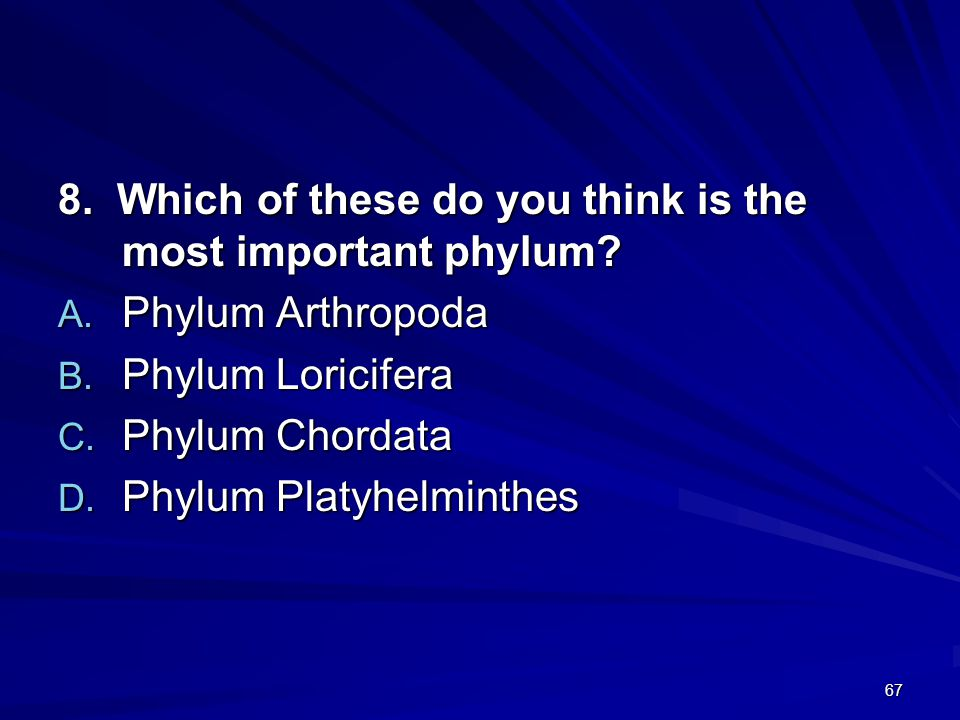8. Which of these do you think is the most important phylum