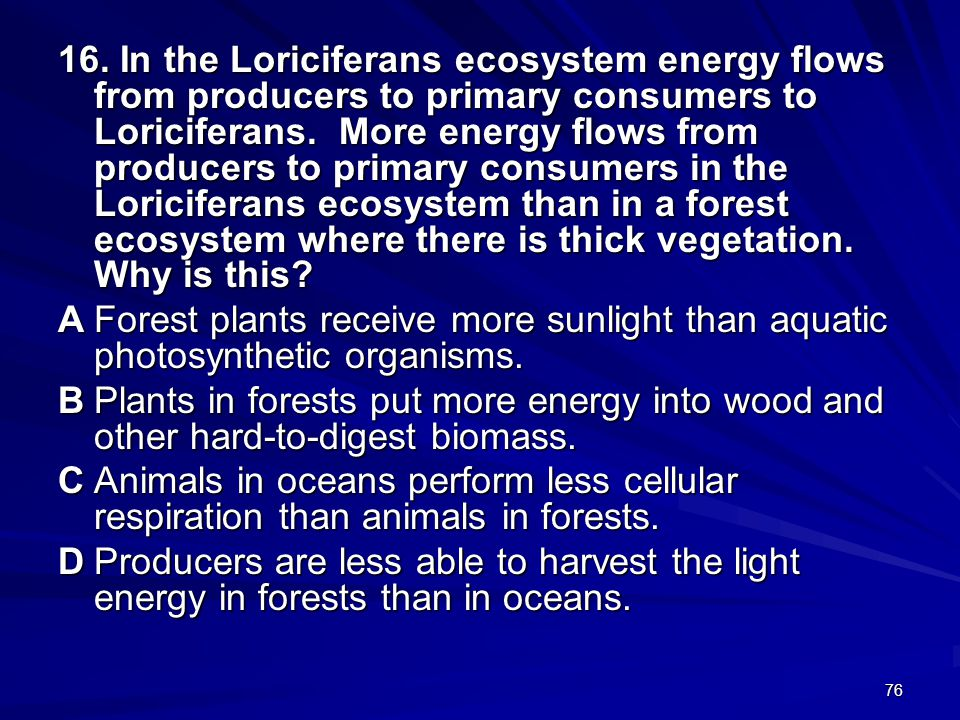 16. In the Loriciferans ecosystem energy flows from producers to primary consumers to Loriciferans. More energy flows from producers to primary consumers in the Loriciferans ecosystem than in a forest ecosystem where there is thick vegetation. Why is this