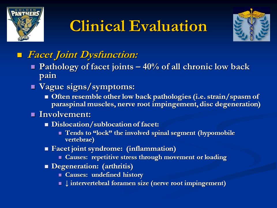 Clinical Evaluation Facet Joint Dysfunction: