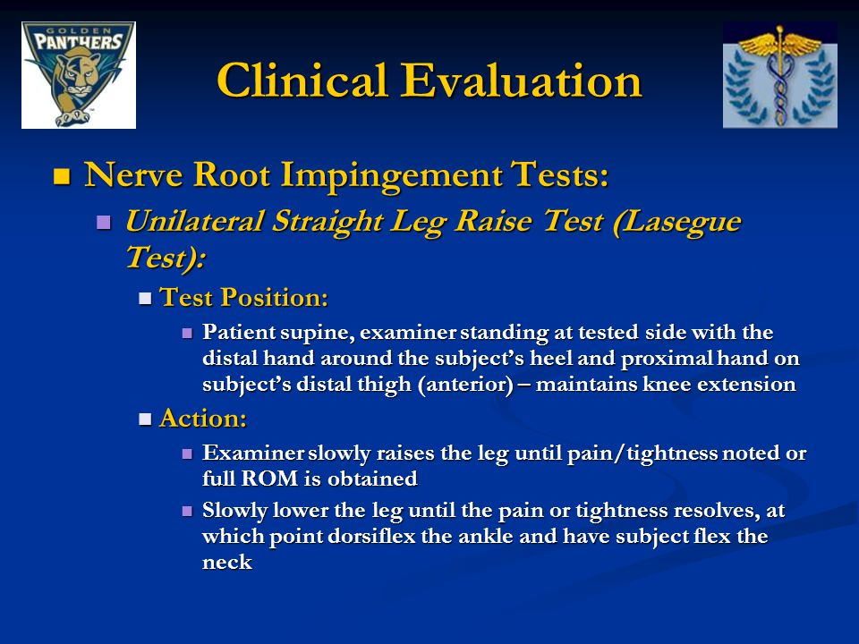 Clinical Evaluation Nerve Root Impingement Tests: