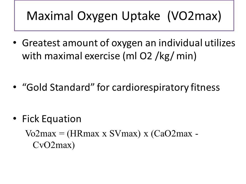 Maximal Oxygen Uptake (VO2max)