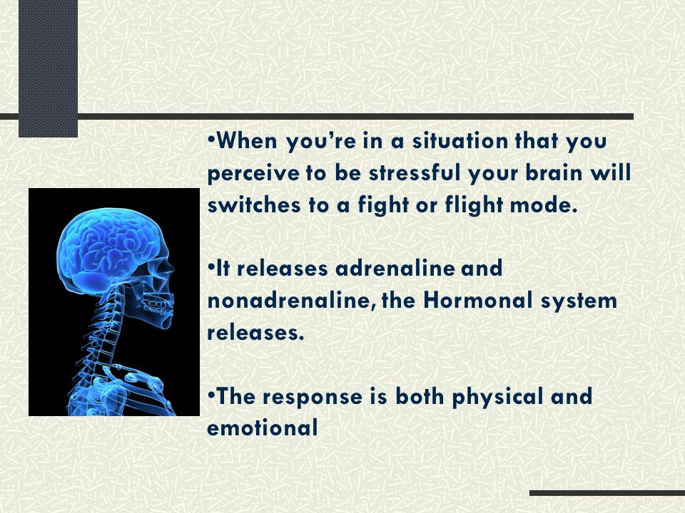 When you're in a situation that you perceive to be stressful your brain will switches to a fight or flight mode.