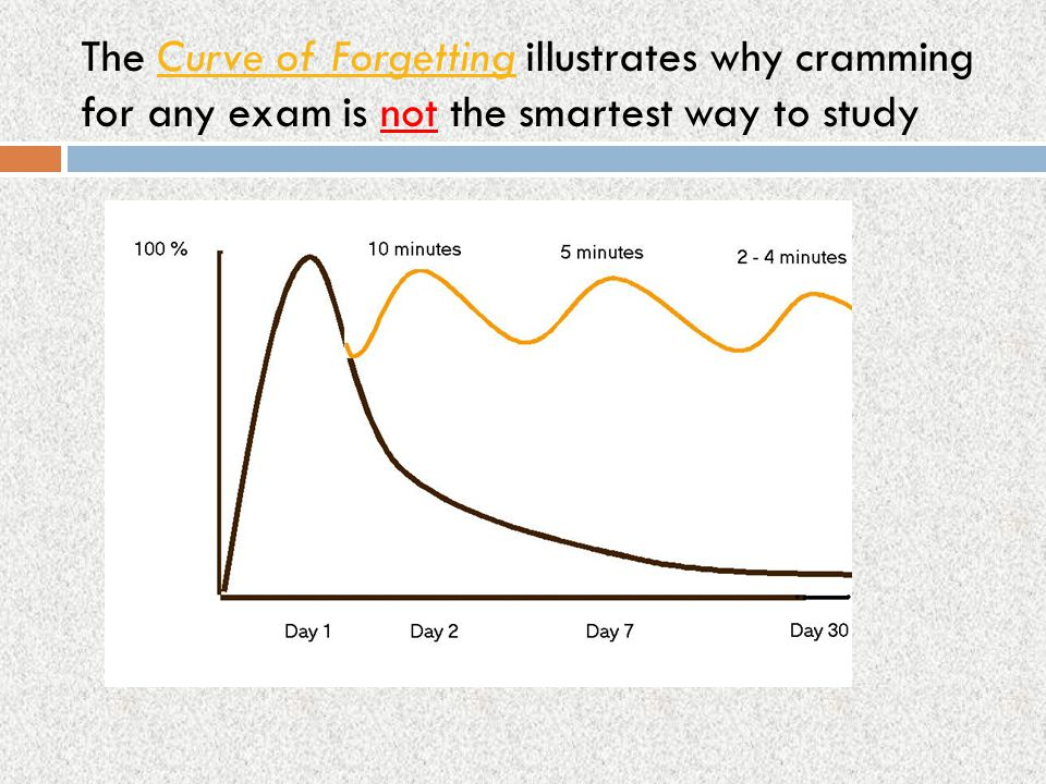 The Curve of Forgetting illustrates why cramming for any exam is not the smartest way to study