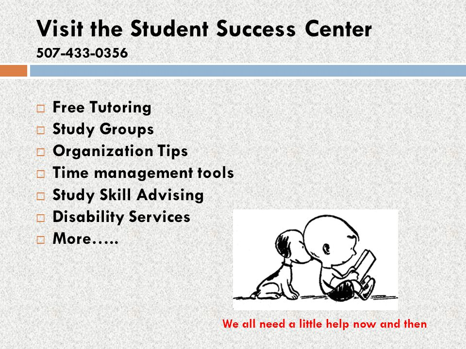 Visit the Student Success Center 507-433-0356