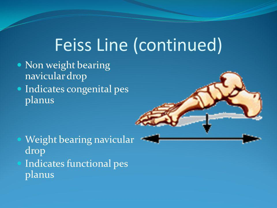 Feiss Line (continued)