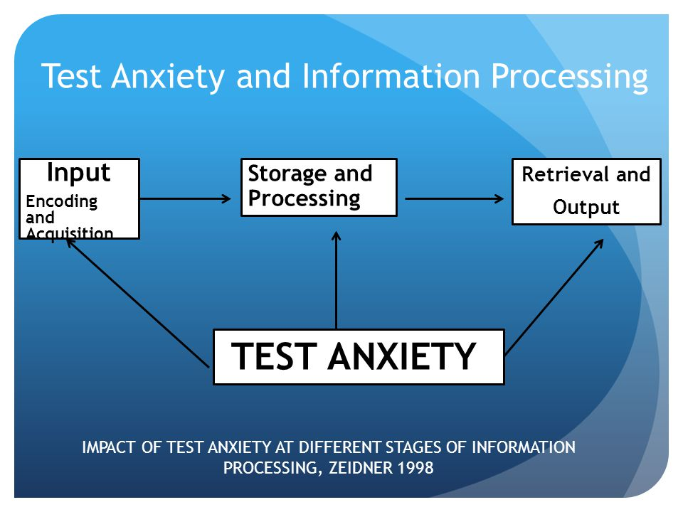 Test Anxiety and Information Processing