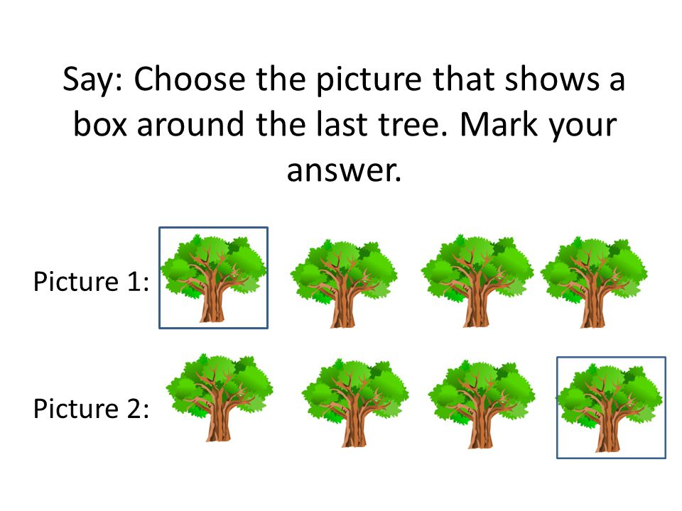 Say: Choose the picture that shows a box around the last tree