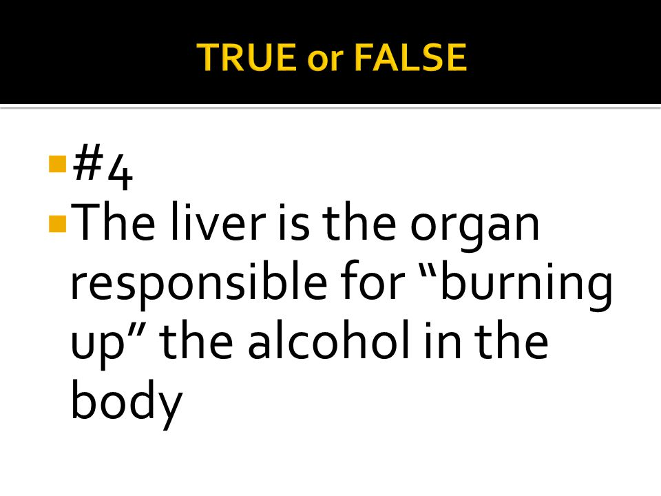 TRUE or FALSE #4 The liver is the organ responsible for burning up the alcohol in the body