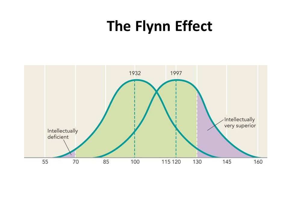 The Flynn Effect IM: Cultural Bias in IQ Testing Activity
