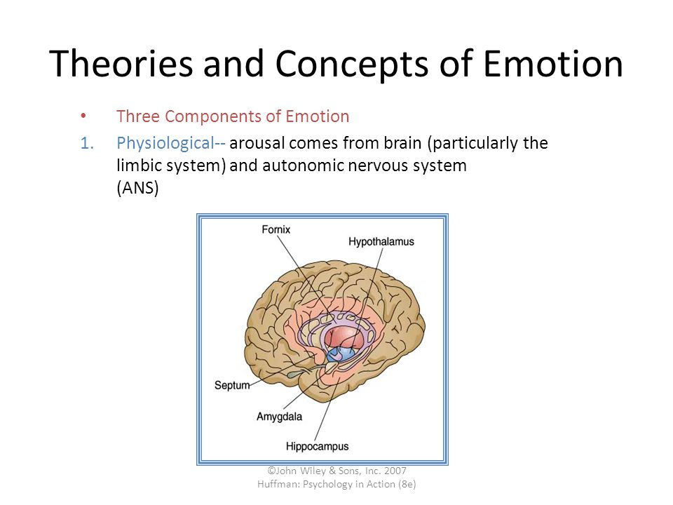 Theories and Concepts of Emotion