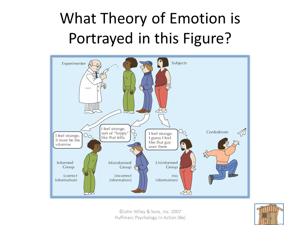 What Theory of Emotion is Portrayed in this Figure