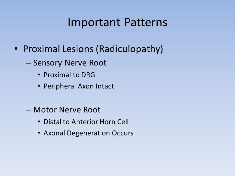 Important Patterns Proximal Lesions (Radiculopathy) Sensory Nerve Root