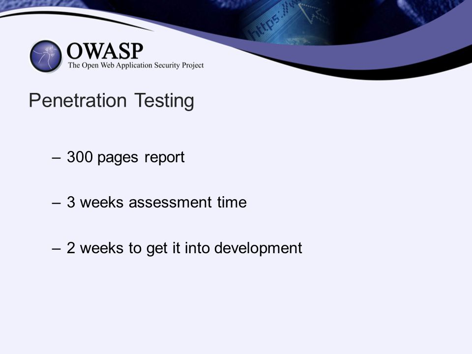 Penetration Testing 300 pages report 3 weeks assessment time
