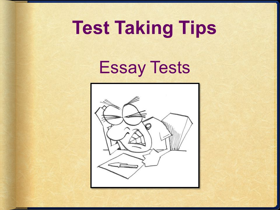 Test Taking Tips Essay Tests