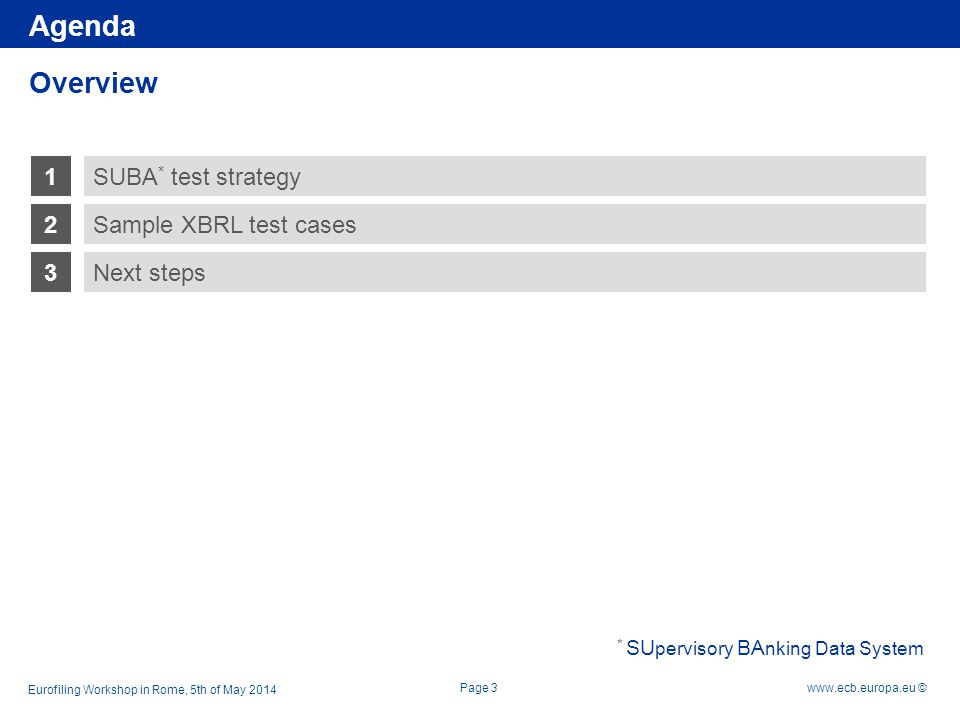 Agenda Overview 1 SUBA* test strategy 2 Sample XBRL test cases 3