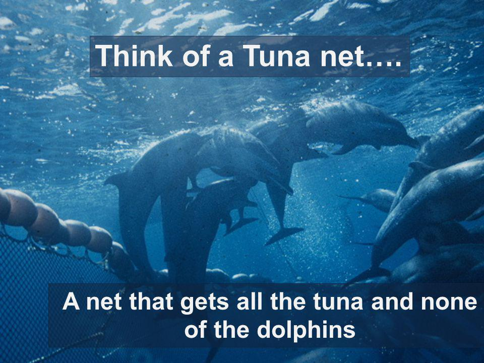 A net that gets all the tuna and none of the dolphins