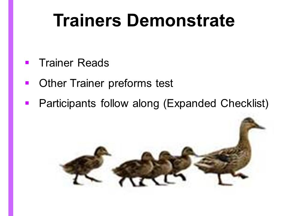 Trainers Demonstrate Trainer Reads Other Trainer preforms test
