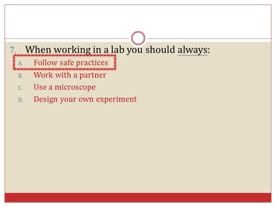 When working in a lab you should always: