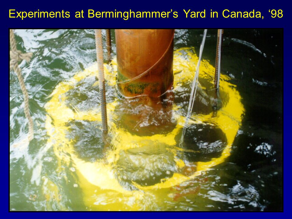Experiments at Berminghammer's Yard in Canada, '98