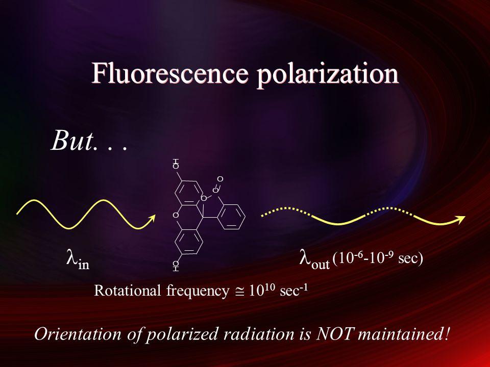 Fluorescence polarization